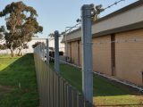 Colourbond Fence Adelaide